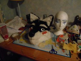 Allen, the fursuit project by lehibouvoyageur