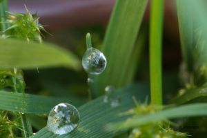 Waterdrops 8 by Prototyps