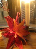 Autumn Leaves flower by semie