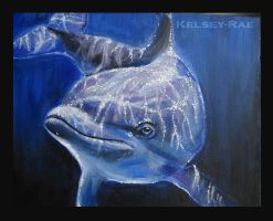 Dolphin by Kelsey-Rae