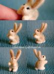 Needle felted white bunny by SaniAmaniCrafts