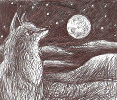 Wolf Drawing by Chardove