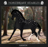 ES Arwen 4447 by NorthEast-Stables