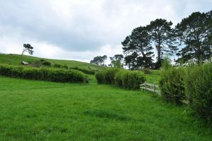 the shire -- where bilbo jump over the fence by iRISSIEL
