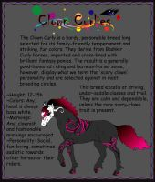 Breed Sheet: Clown Curlies by Everland-Stables