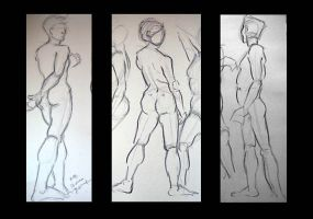 Quick Fig studies by koanne