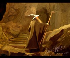 Gandalf Lights the Way by DivineRadiance