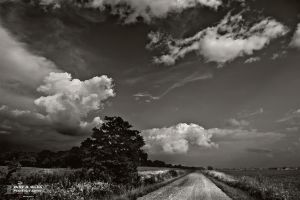 Country road by BillyRWebb