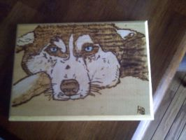 Wood Burning: A Husky by Autobotschic