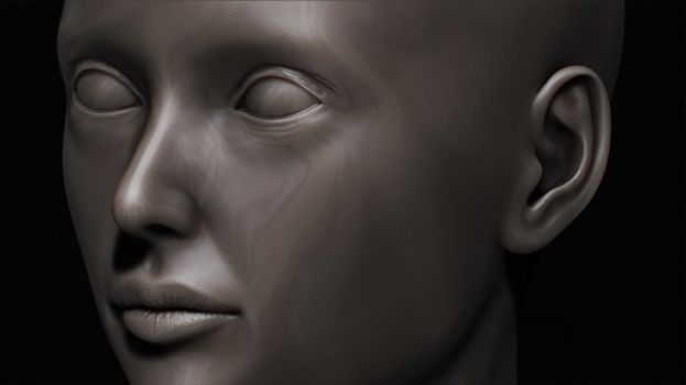 Female Zbrush Sculpt - WIP by shellcasing