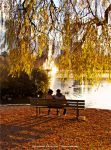 Autumn Moments by Val-Faustino