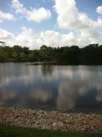 Little Lake Thing by Niloa