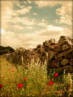 The lonely stonewall... by eamfos