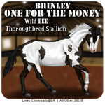 One For The Money v2 by dixiedarlin