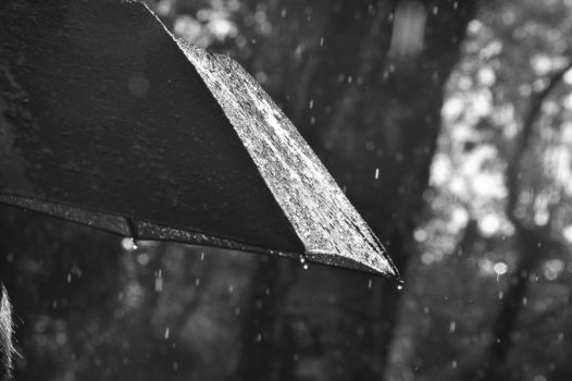 Rain in black and white by PersephoneMcH
