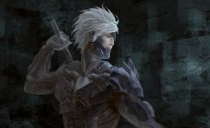 Raiden by folie-0885