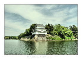 Part of Nagoya Castle by rikachu426