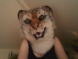 Mr Rawrs Fursuit Head by MissRars