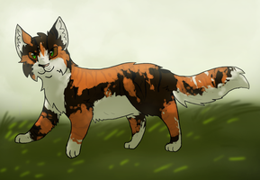 24.Tawnypelt by JasperLizard