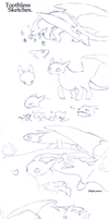 Toothless Sketches by TabberHatter