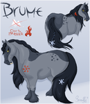 Brume - Character Sheet by Saraffy