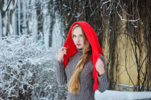 Winter Fairytale 4 by silverwing-sparrow