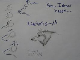 Wolf Head Tuotrial by TheNewCoyote