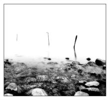 Shallow Waters by BELFASTBAP