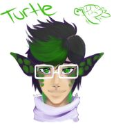 Turtle by PocketPrism