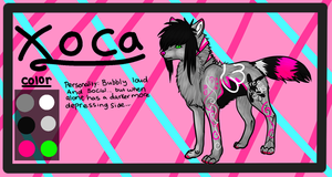 Xoca reference by Tontora