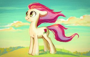 Rose on the hill by Lis-Alis