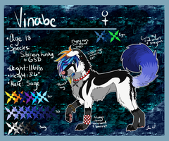 :Vinabe:Reference Sheet 2013: by Vinabe