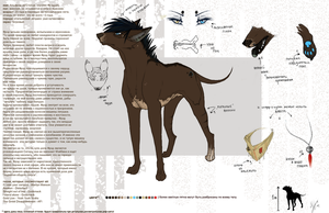 Fred's reference-sheet. o1 by Maybah-Loton
