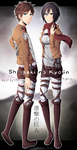 Eren and Mikasa by xSilverflowerx