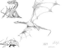 Smaug Visualization by happycdjohnson