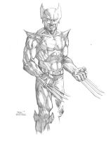 Commission: Wolverine by DerekRodenbeck