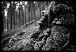 a cold day in hell -bw by VooDooMania