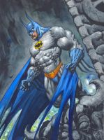Batman : Gargoyles Of Gotham by avix