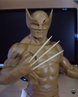 Wolvie WIP 01 by ddgcom