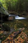 Autumn 2012 by TRBPhotographyLLC