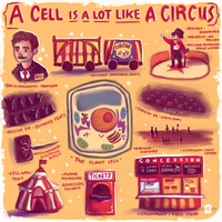 Cell Analogy by lucity