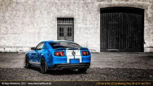 blue new shelby by AmericanMuscle