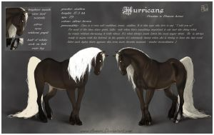 Hurricane - reference sheet by Aomori