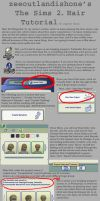 The Sims 2 Hair Color Tutorial by zeeoutlandishone