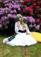 Code Geass: Country C.C. by Green-Makakas