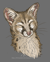 Happy Genet by Krissyfawx