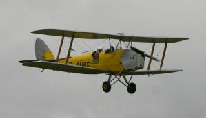 classic wings tiger moth by Sceptre63