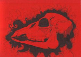 Red, skull, mat of hair by pink-porcupine