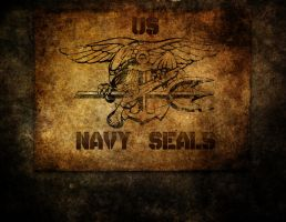 Navy Seals by Hickory2211