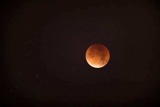 Supermoon Lunar Eclipse from London 2015.09.28 by TMProjection